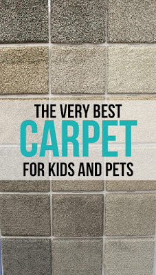 Best Carpet For Pets