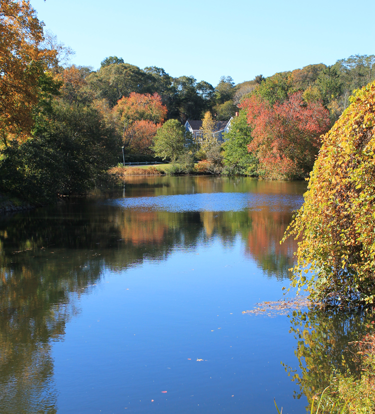 Jenny's Pond in Plymouth Massachusetts