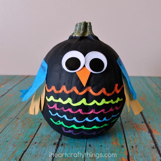 no carve owl pumpkin