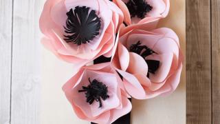 Paper Anemonies