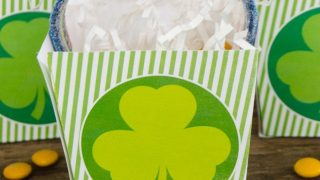 Printable St. Patrick's Day Favor Boxes
