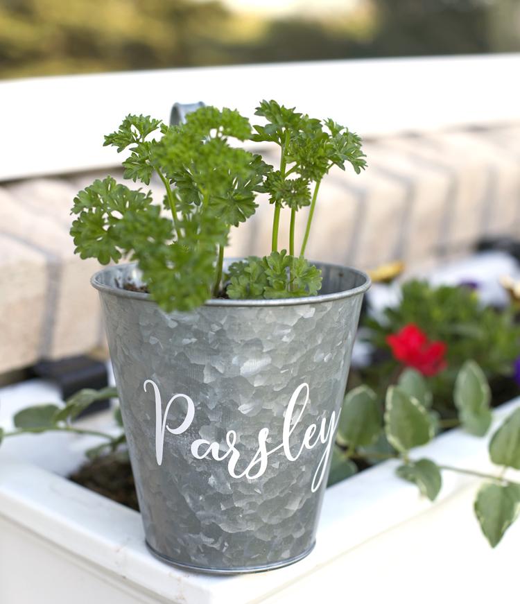 cute herb garden ideas