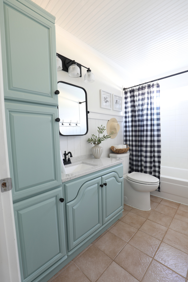 bathroom cabinet painted Sherwin-Williams Halcyon Green